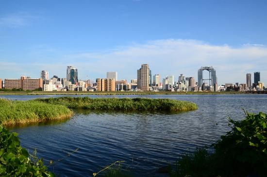 淀川と売上・利益の関係
