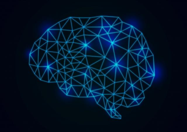 ビジネス脳タイプ診断とは